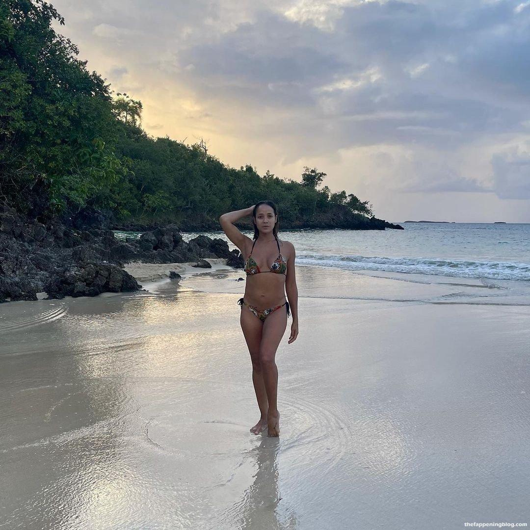 Dania Ramirez Sexy 8